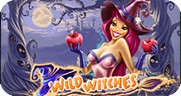 Witches Wealth игровой автомат